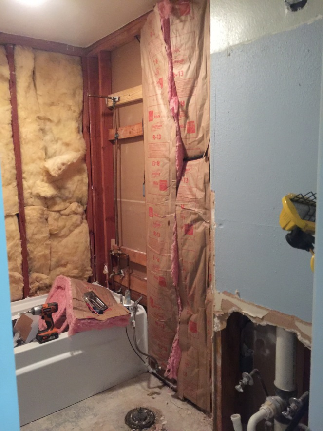 Bathroom Beautification Project Ugly House